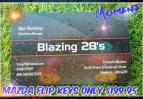 Image for Blazing 28's