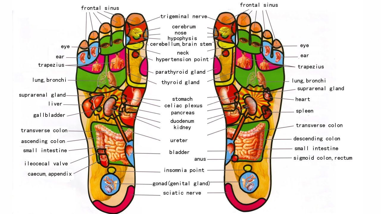 Image for Reflex and Relax Reflexology